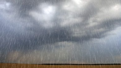 Photo of Maior chuva dos últimos 20 anos deixa moradores desabrigados na PB