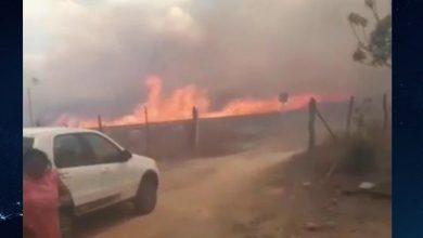 Photo of Fogo de carro-forte causa incêndio em mata de São José de Caiana