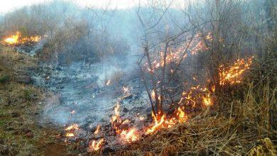 Photo of Mais de 550 incêndios foram registrados no Sertão da Paraíba este ano