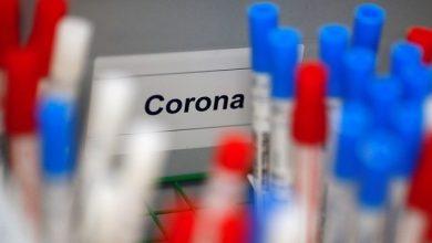 Photo of Novo coronavírus infecta 65 bebês no Ceará