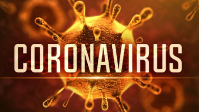 Photo of Coronavírus na Paraíba ultrapassa a marca de 500 casos confirmados; número de mortos sobe para 50