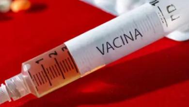 Photo of Cuba testa sua vacina contra Covid-19 em primeiros voluntários