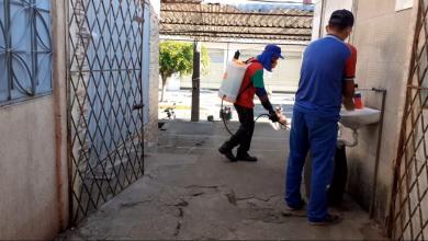 Photo of Prefeitura de Itaporanga realiza dedetização no mercado público e no açougue