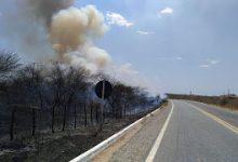 Photo of Queimadas tomam conta de áreas às margens da BR-361 entre Piancó e Itaporanga