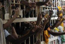 Photo of 85,7% dos brasileiros não concordam com uso da pandemia para soltar presos