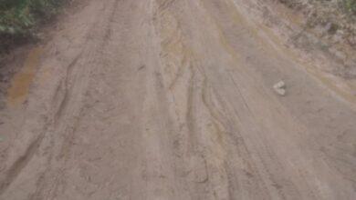Photo of ASSISTA: Prefeitura de Itaporanga realiza manutenção das estradas rurais,  mesmo no período chuvoso