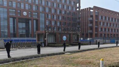 Photo of China e a origem do coronavírus: morcego e acidente de laboratório são pontos investigados